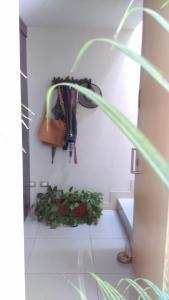 Suite Personal, Ubytování v soukromí  Puebla - big - 10