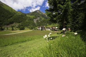 obrázek - Vital- und Wanderhotel Taurerwirt