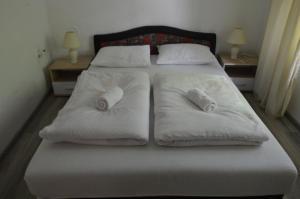 Hostel Una Rosa - фото 4