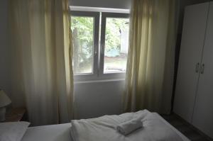 Hostel Una Rosa - фото 6