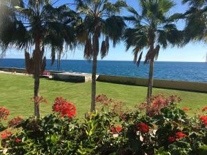 Ocean32, Case vacanze  Pasito Blanco - big - 23