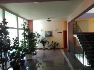 Hotel Dinara - фото 2