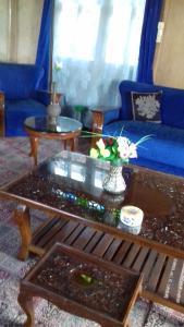 Kashmir View Houseboat, Отели  Сринагар - big - 18