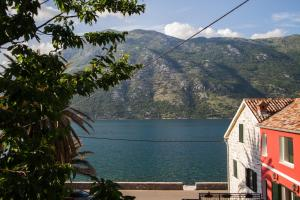 Stoliv Bay House, Holiday homes  Tivat - big - 4