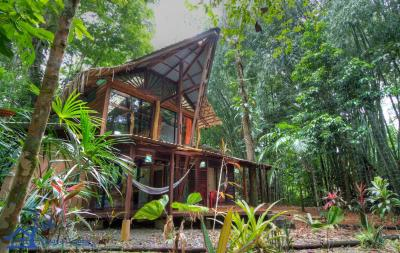 Exotic Jungle House