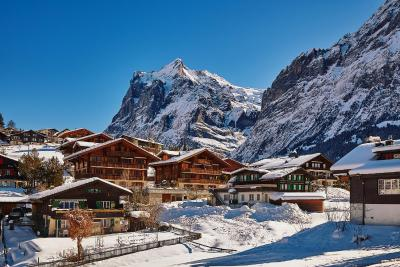 Apartment Chalet Fagus Grindelwald