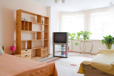 Apartment on Pritytskogo 97