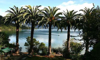 Te Mahia Bay Resort