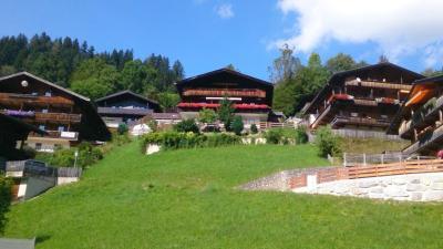 Gondelblick Alpbach