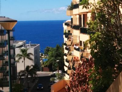 Slice of Paradise in Madeira Island