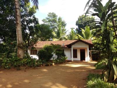 Pinnawala home stay