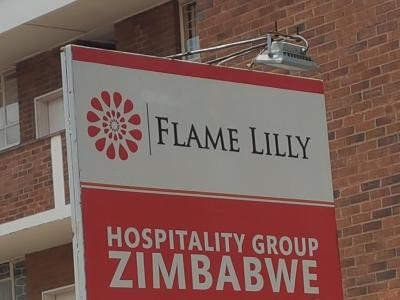 Flame Lilly Bulawayo