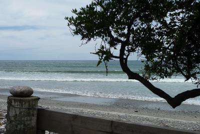 The Beach Nest