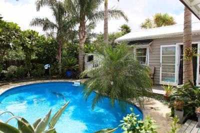 Devonport Palms
