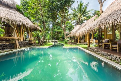 Omunity Bali, Сингараджа