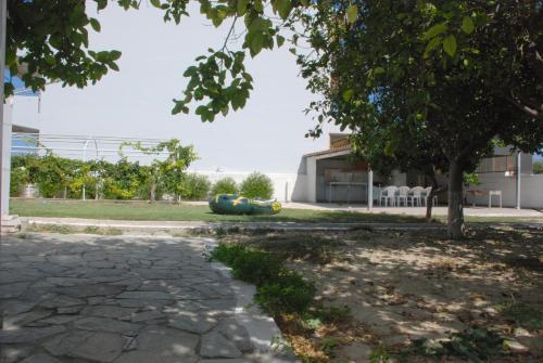 Kostas Family House