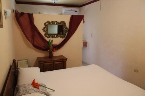 Toucan's Nest Resort