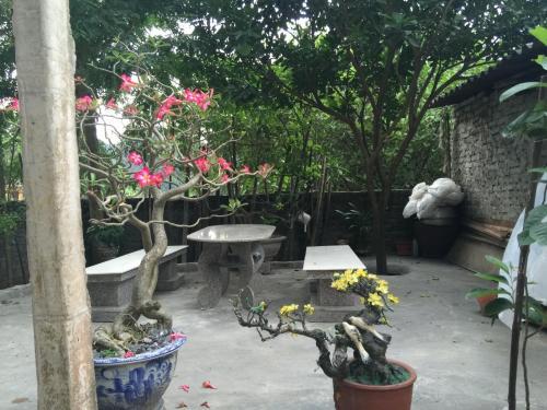 Hung Anh Homestay