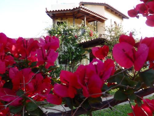 Villa Alissos