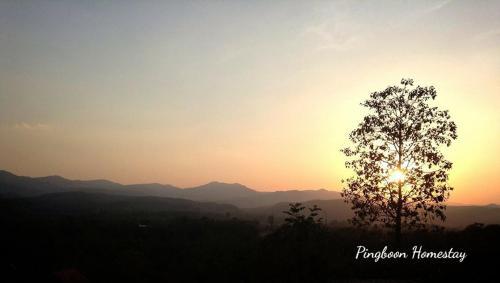 Phingboon