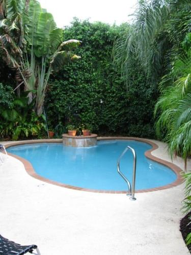 Swimming pool Mango Inn Bed and Breakfast