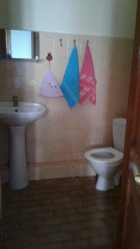 Guest House Eligo