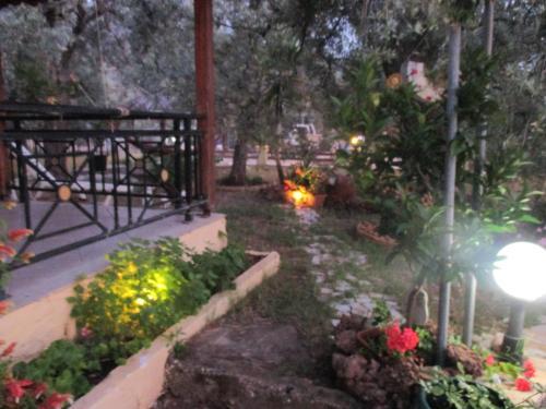 Elena's House Garden