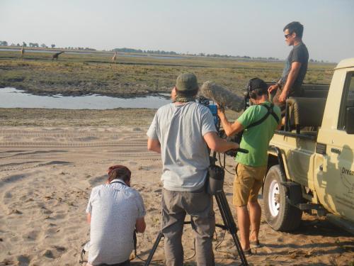 Dreams Safaris, Kasane