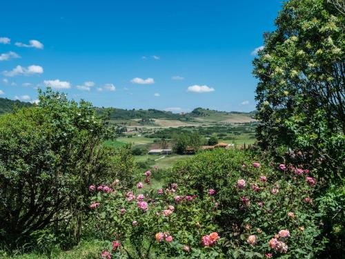 Locazione turistica La Arianna