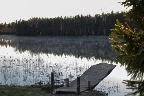 Niinsaare Camping