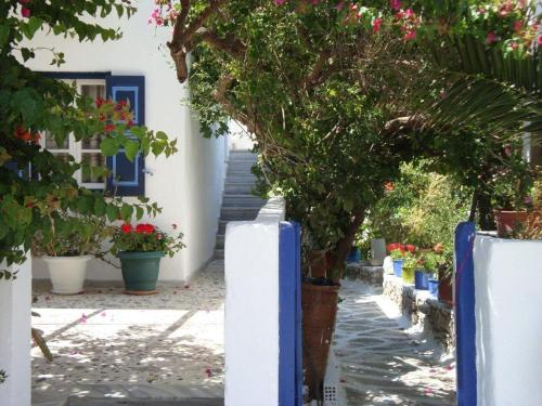 Photo of Artemis Pension Hotel Bed and Breakfast Accommodation in Amorgos N/A