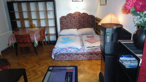 Studio-Apartment (3 Erwachsene) (Studio Apartment (3 Adults))