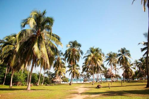 Playa Brava Teyumakke, El Zaino