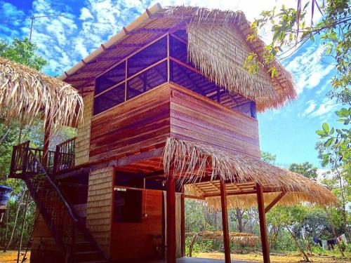 EcoViva Amazônia
