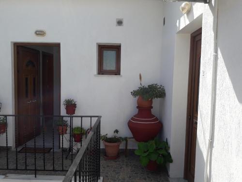 Agnantio Studio, Neo Klima