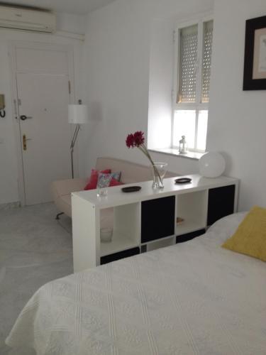Apartamento Tomas de Ibarra Fotka  10