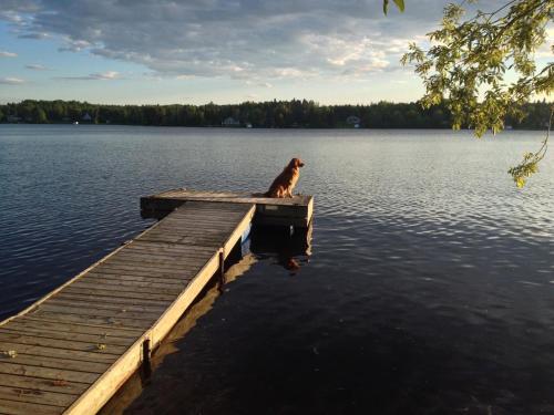 Entre Deux Eaux Lac Otis
