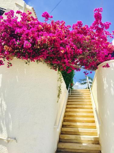 Charming Villa Walk to Sea
