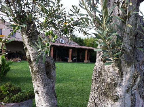 Agriturismo Il Giglio in Oristano