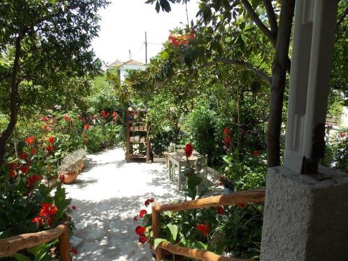 Stamatia's Garden