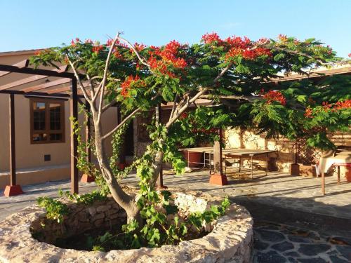 Villa La Vista de Tefia Immagine 19