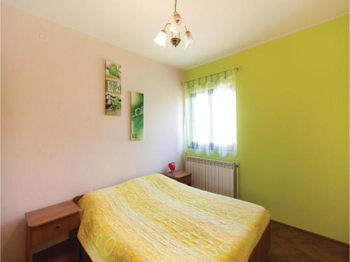 Apartment Svetvincenat EF-1919