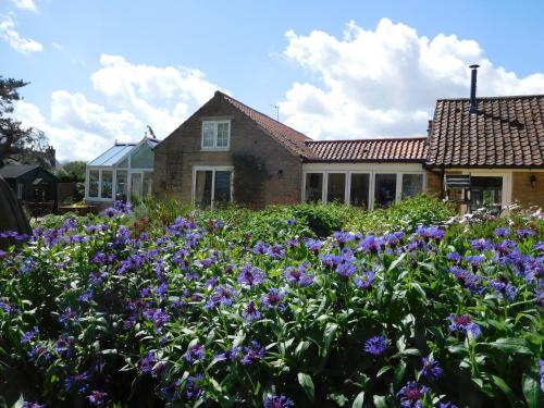 Foxholm Bed and Breakfast
