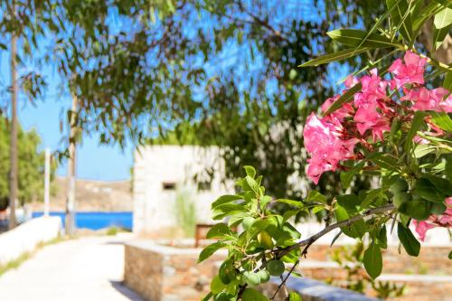 Beach Apartment Serifos port