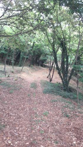 Quinta Vale do Nox