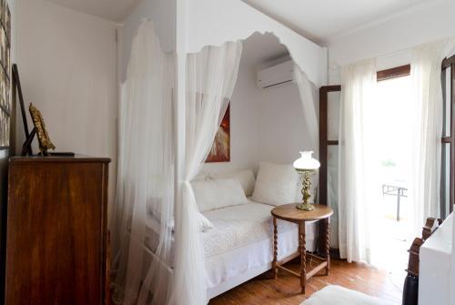 Antonia's Home