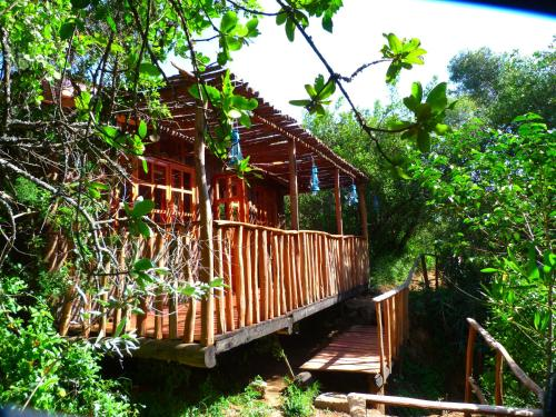 Colobus Cottages