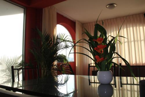 HotelKawsay