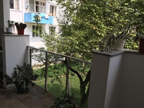 Апартаменты Пиросмани