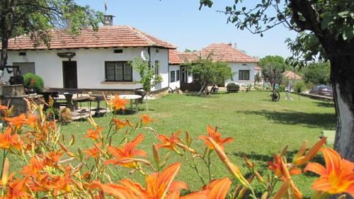Holiday Village Diadovite Kashti